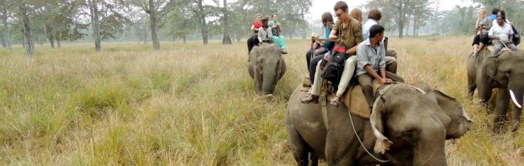 DTS Students taking their gap year in Nepal