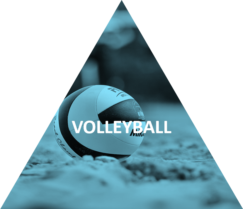 VOLLEYBALL ELECTIVE